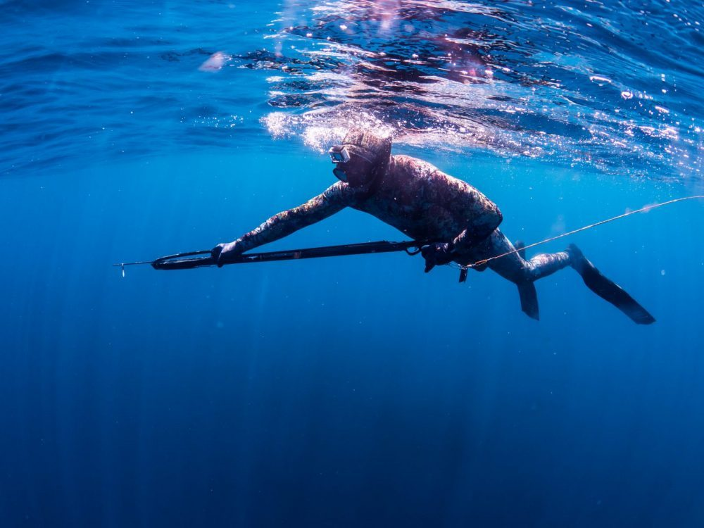 Spearfishing Courses